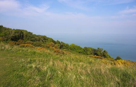 Eastbourne - Beachy Head - meadow - III -