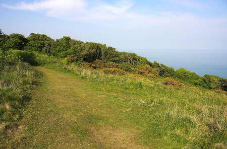 Eastbourne - Beachy Head - meadow - II -