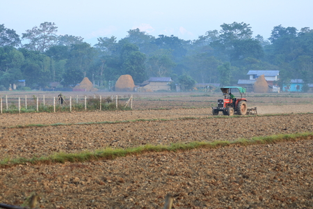 Tractor plowing a rice field, Nepal