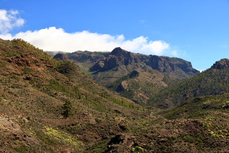 The green valley Barranco de Mogan on Gran Canaria Spain
