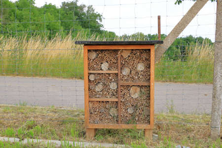 a wild bee and insect shelter hotel Banco de Imagens