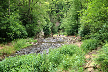 June 21 2020 - Rabenau, Europe, Germany: Resting place in the forest at a mountain river between trees