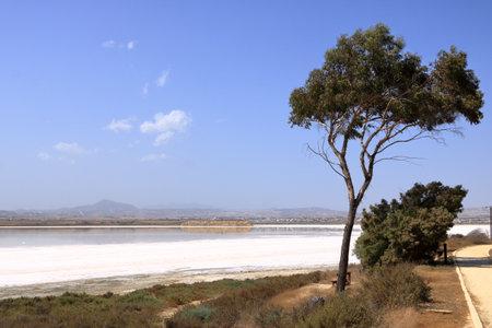 Beautiful Salt Lake in Larnaca at Cyprus. Natural background. Landscape