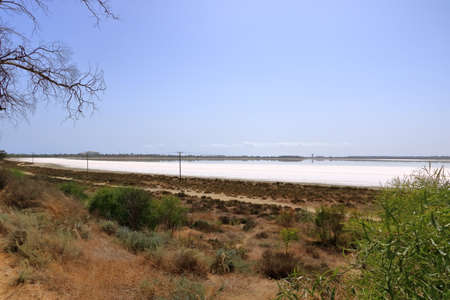 Beautiful Salt Lake in Larnaca at Cyprus. Natural background. Landscape