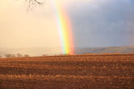 Rainbow over stormy sky. Rural landscape with rainbow over a dark stormy sky in a countryside 免版税图像