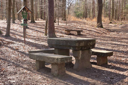 Rock table and chair in the forest background. A large nature stone table and bench in the park