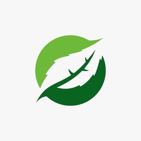 Green leaf logo vector illustration.