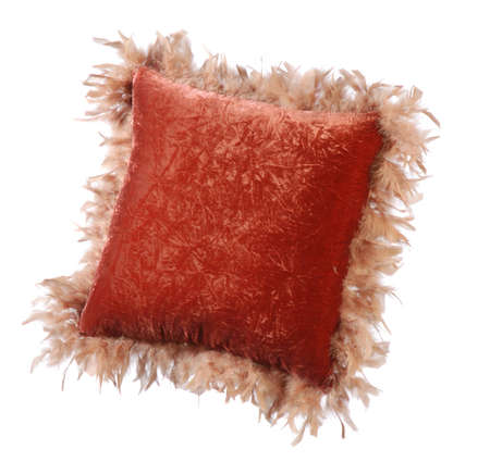red sofa pillow with a velvet cover, mounted light feathers