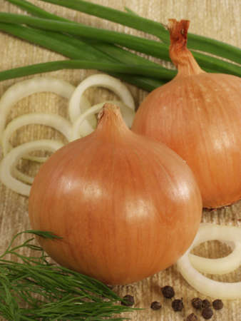 pungent: Two bulbs on a sacking on a background of a green onions and onions rings