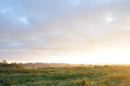 levantandose: los rayos de un Domingo de levantarse de diapositivas sobre una pradera verde y la luz hasta el cielo