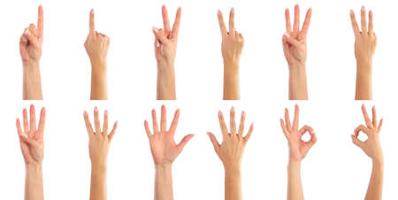 four hands: Female hands counting