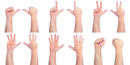four hands: Different male hands counting
