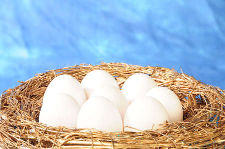 white eggs in golden nest photo