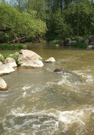 quickly: Landscape with clear water in fast small river quickly runs between stones in summer day