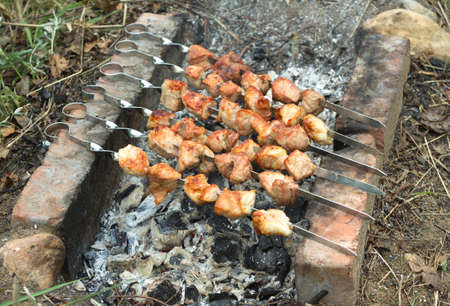 brazier: Tasty barbecue preparing outdoor on brazier with hot charcoal closeup Stock Photo