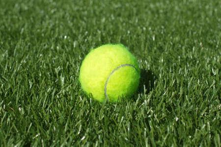pasto sintetico: Pelota de tenis amarilla pone en campo de tenis de hierba sint�tica, primer