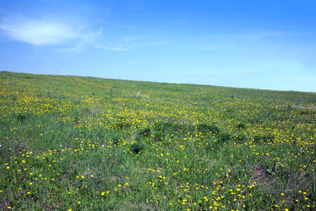 slantwise: Landscape with green meadow and sloping hill with many yellow dandelions under beautiful sky with clouds in summer day Stock Photo