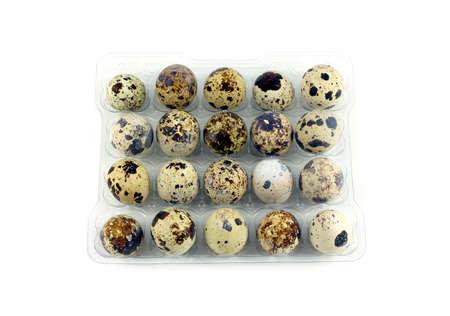 mottle: Molte uova di quaglia in mottle cellule imballaggi in plastica isolato primo piano