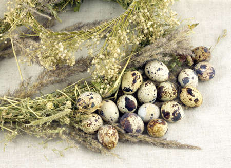 champ de fleurs: Still life with quail eggs with dry grass and field flowers on brown canvas closeup