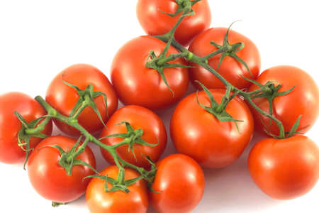 many branches: Many ripe red tomatoes on green branches isolated closeup Stock Photo