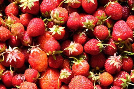 selected: Appetizing background from red ripe strawberries fruits top view closeup
