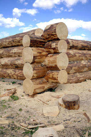 Construction of rural houses from heavy logs against blue sky with clouds in summer day closeup view