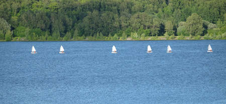 Sport yachts sailing in calm water near green coastline