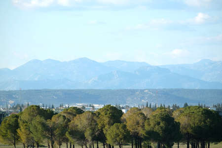 Rural landscape with trees and mountains Banco de Imagens
