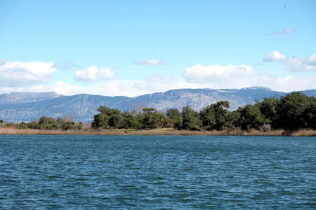 Lake, pine forest and mountains