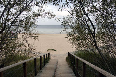 Path to the empty sandy sea beach by wooden stairs going through the trees