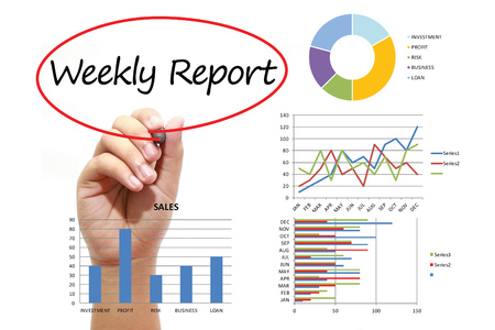 Doc580650 Weekly Report Writing Doc787578 How to Write a – Weekly Report Writing