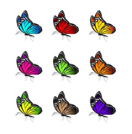 Set van realistische kleurrijke vlinders die voor het voorjaar. Bewerkbare vector illustratie