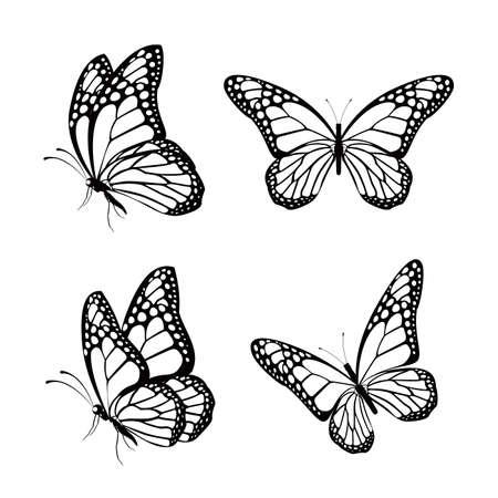 mariposas amarillas: Conjunto de la silueta de las mariposas de colores aislados por un resorte. Ilustración vectorial editable
