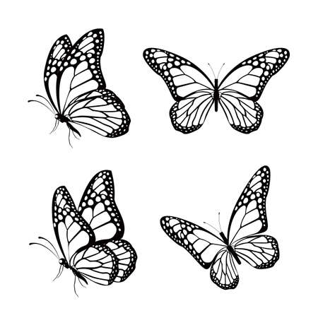 silhouette papillon: Ensemble de Silhouette Colorful Butterflies isolés pour le printemps. Modifiable illustration vectorielle