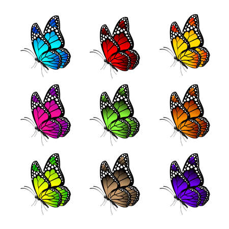 Set of Realistic Colorful Butterflies Isolated for Spring. Editable Vector Illustration Vector