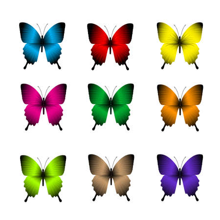 butterfly background: Set of Realistic Colorful Butterflies Isolated for Spring. Editable Vector Illustration Illustration
