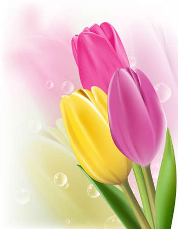Realistic Colorful Tulips in Isolated Background. Editable Vector Illustration