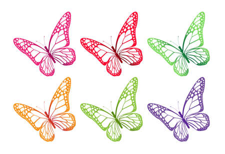 Set of Colorful Butterflies Isolated for Spring. Editable Vector Illustration Vector
