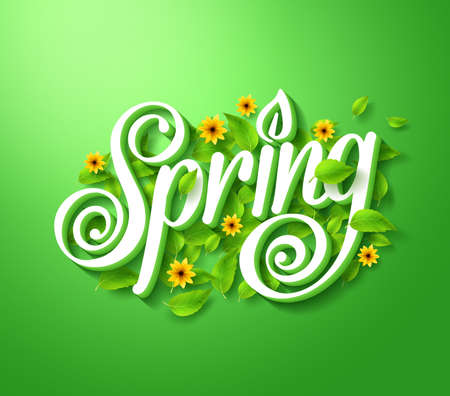 spring season: Spring Typography Title Concept in 3D with Long Shadow Decorated with Flying Leaves and Flowers in Green Background. Realistic Vector Illustration