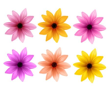 Réaliste Set 3D de fleurs colorées de marguerite pour le printemps Saison isolé en arrière-plan blanc. Vector Illustration