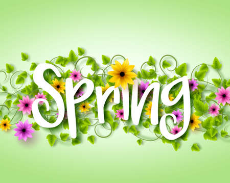 Vector Spring Text Design with Colorful Realistic Elements like Flowers and in the Background. Vector Illustration Vector Illustration