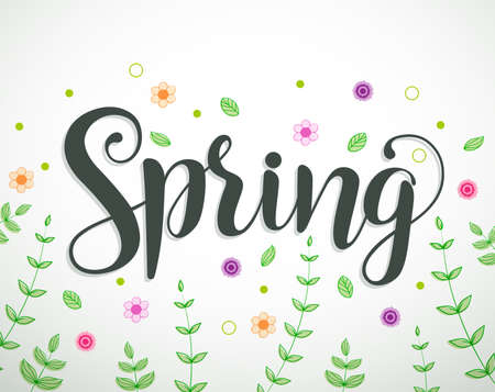 vines: Spring text vector background design with colorful flowers, vines and leaves elements in white. Vector illustration.