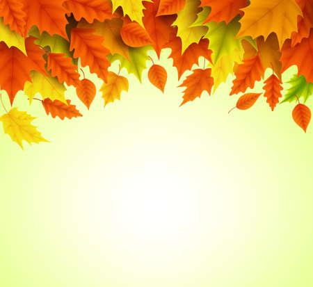 オレンジと黄色のもみじの秋の背景ベクトル テンプレート本文空空白スペースで秋のシーズンのための落下を葉します。ベクトルの図。  イラスト・ベクター素材