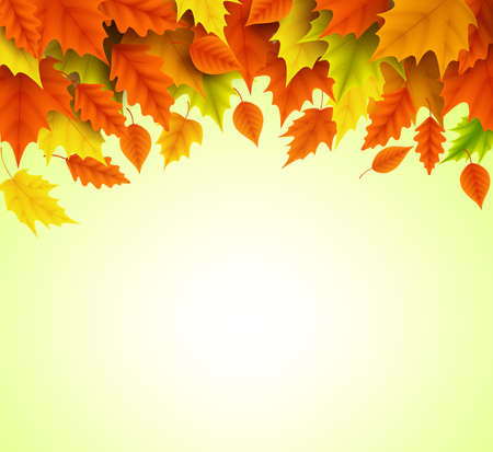 Autumn background vector template of orange and yellow maple leaves falling for fall season with empty blank space for text. Vector illustration.