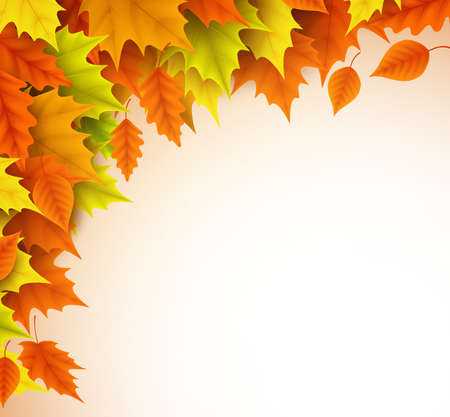 Autumn vector background template. Fall season maple leaves elements with empty blank white space for text. Vector illustration. Illustration