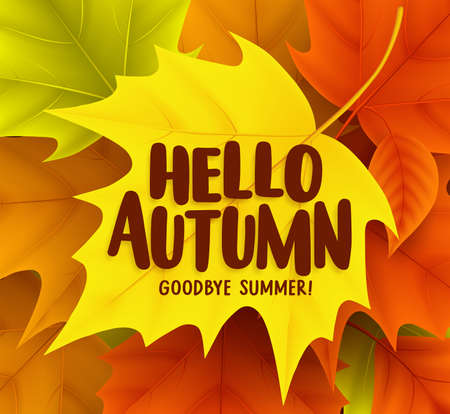 Hello autumn greetings vector design with yellow maple leaf and hello autumn greetings vector design with yellow maple leaf and a background of colorful fall season m4hsunfo