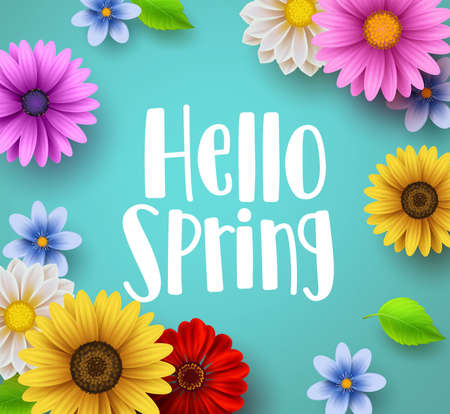 Hello spring text vector banner greetings design with colorful flower elements like daisy and sunflower in green floral background for spring season. Vector illustration. Vectores