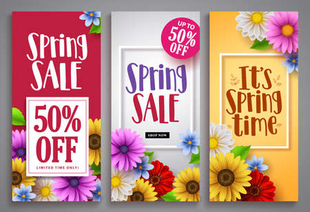 Spring sale vector poster set with colorful background templates, frames and various daisy flowers for spring seasonal discount marketing and background designs. Vector illustration. 向量圖像