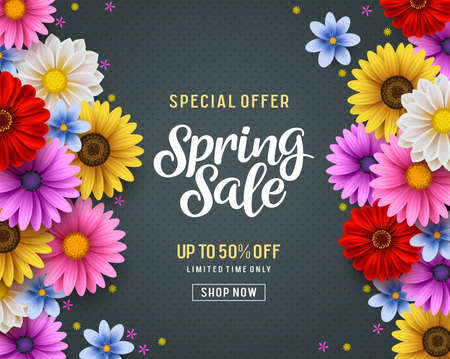 Spring sale and special offer vector banner background with colorful chrysanthemum and daisy flowers elements and spring season shopping promotional text. Vector illustration. Illusztráció