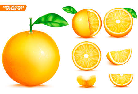 Orange Fruit Ripe Realistic 3D Vector Food Set. Whole Half and Sliced Version In Isolated White Background